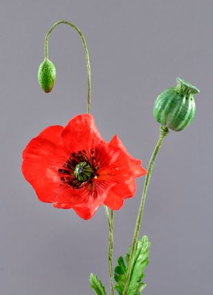Wafer Paper Poppy