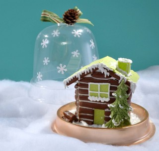 Edible Snow Globes!