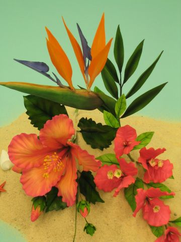 exotic tropical2